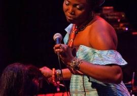 africa-day-limerick-city-2012-i-love-limerick-42