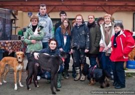 Animal Welfare Store Limerick 2011 (32)