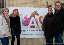 Animal Welfare Store Limerick 2011 (35)