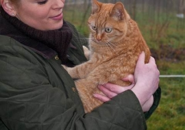 Animal Welfare Store Limerick 2011 (37)