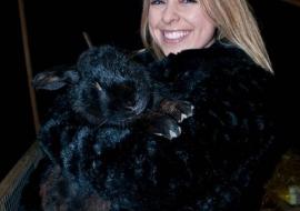 Animal Welfare Store Limerick 2011 (42)