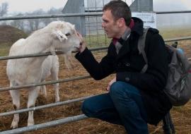 Animal Welfare Store Limerick 2011 (43)