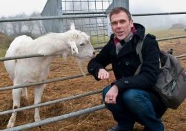 Animal Welfare Store Limerick 2011 (44)