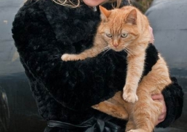 Animal Welfare Store Limerick 2011 (58)