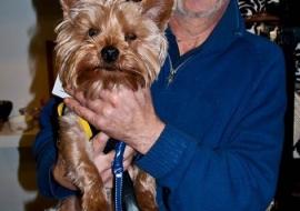 Animal Welfare Store Limerick 2011 (6)