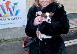Animal Welfare Store Limerick 2011 (63)