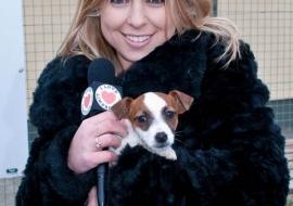 Animal Welfare Store Limerick 2011 (64)