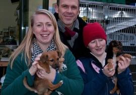 Animal Welfare Store Limerick 2011 (69)