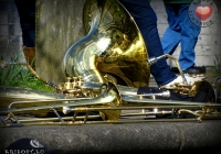 international-band-competition-2013-album-2-i-love-limerick-17