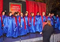 limerick-christmas-lights-2012-i-love-limerick-07