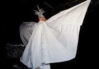 limericks-gay-pride-2010-168