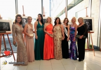 mayors-ball-2013-i-love-limerick-27