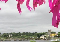 pink-ribbon-walk-killaloe-i-love-limerick-11