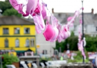 pink-ribbon-walk-killaloe-i-love-limerick-50