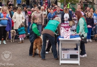riverfest-dog-show-i-love-limerick-17
