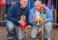 riverfest-dog-show-i-love-limerick-21