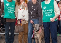 riverfest-dog-show-i-love-limerick-32