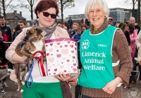 riverfest-dog-show-i-love-limerick-42