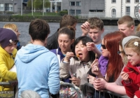 riverfest-sunday-album-i-love-limerick-28