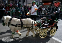 st-patricks-day-2013-album-1-by-cian-mc-namara-80
