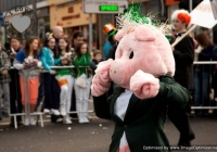 st-patricks-day-limerick-2012-182