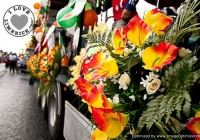st-patricks-day-limerick-2012-19
