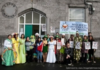 st-patricks-day-limerick-2012-7