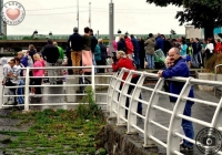 thomond-swim-2012-i-love-limerick-14