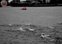 thomond-swim-2012-i-love-limerick-27