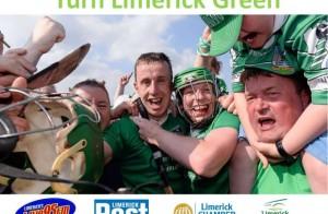 Turn-Limerick-Green-640x420
