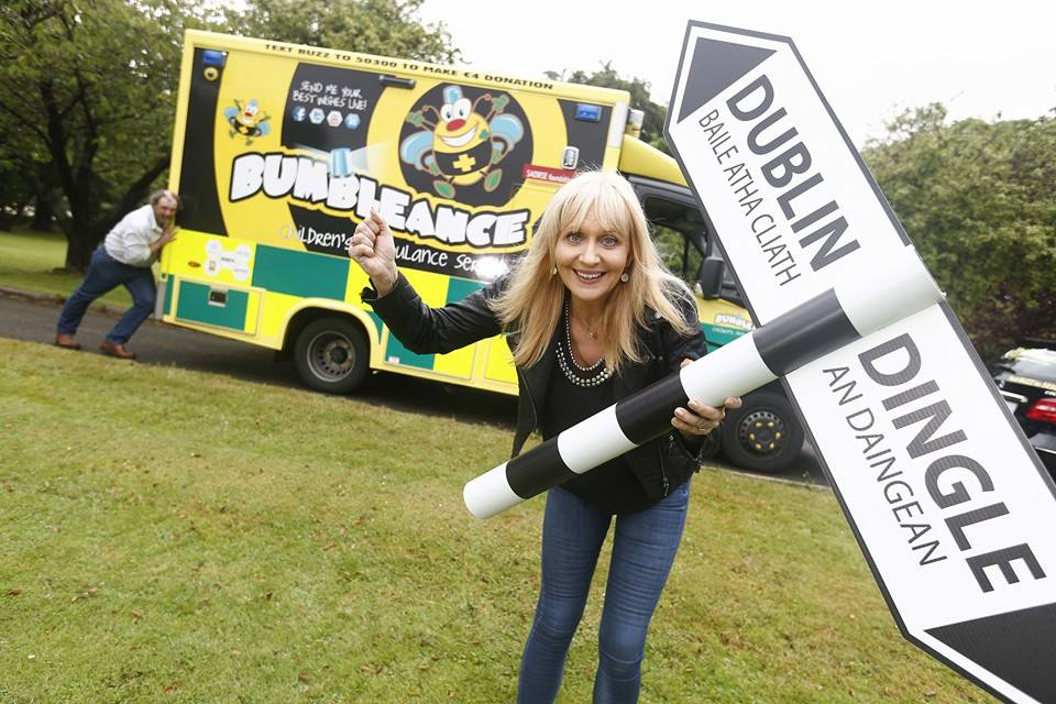BUMBLEance rolls into Limerick