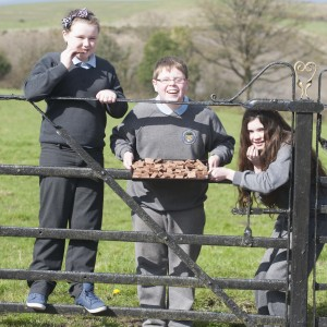 Pupils from Ballynahinch, National School, County Limerick with their fudge project, from left,Heather Bradshaw, Cathal Cooney and Niamh Anderson.