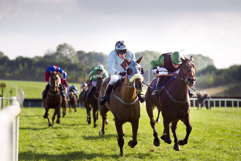 Limerick Racecourse St Patricks