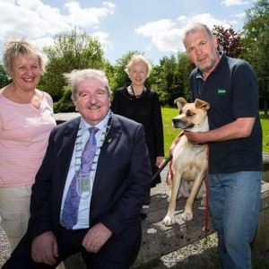 Campaign steps us to combat dog fouling in Limerick