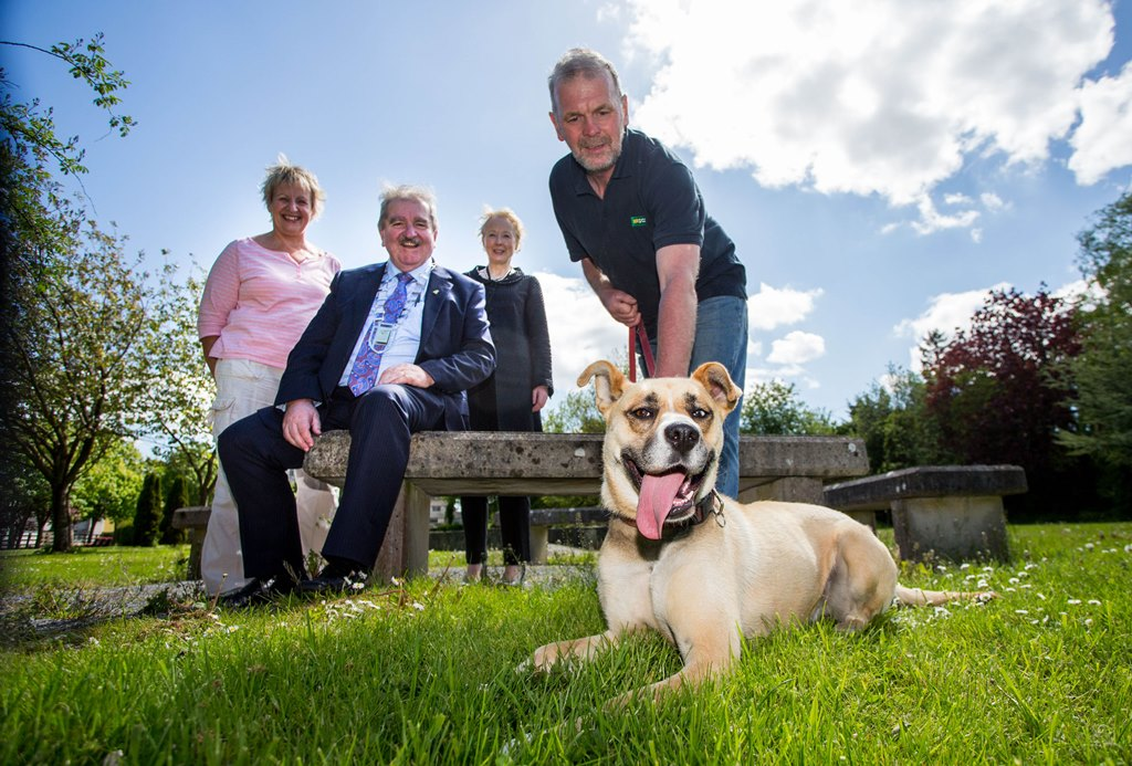 Campaign steps us to combat dog fouling in Limerick/Any Bag Any Bin campaign