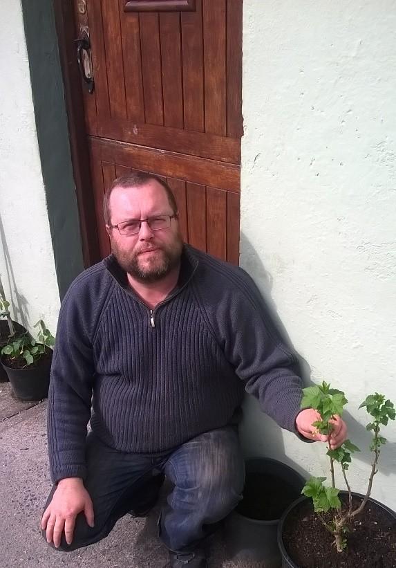 Albert Nolan's Wild about Limerick