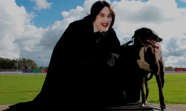Kerry Agribusiness Irish St Leger greyhound final Halloween Night