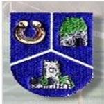 Pallaskenry GAA Club