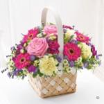 Lawless Flower & Plant Shop