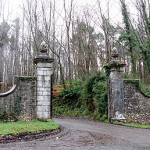 Curraghchase Forest Park