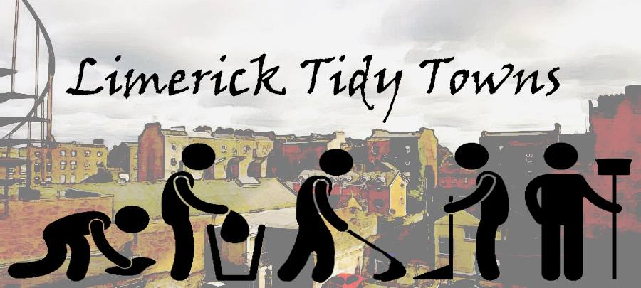 Limerick Tidy Towns Monthly Award January 2017