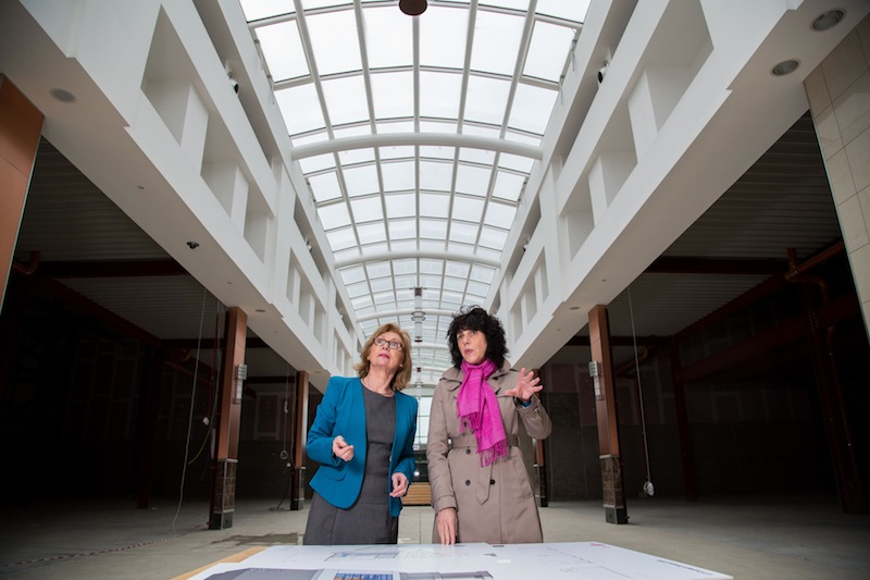 Coonagh Campus Development