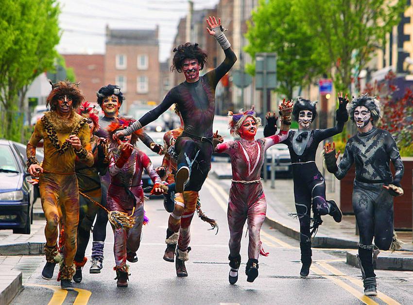 TomCat Limerick Street Festival 2016