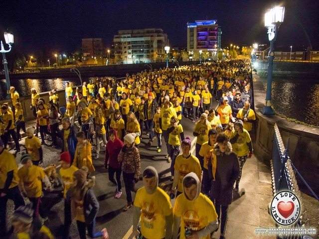 Darkness into light limerick 2016