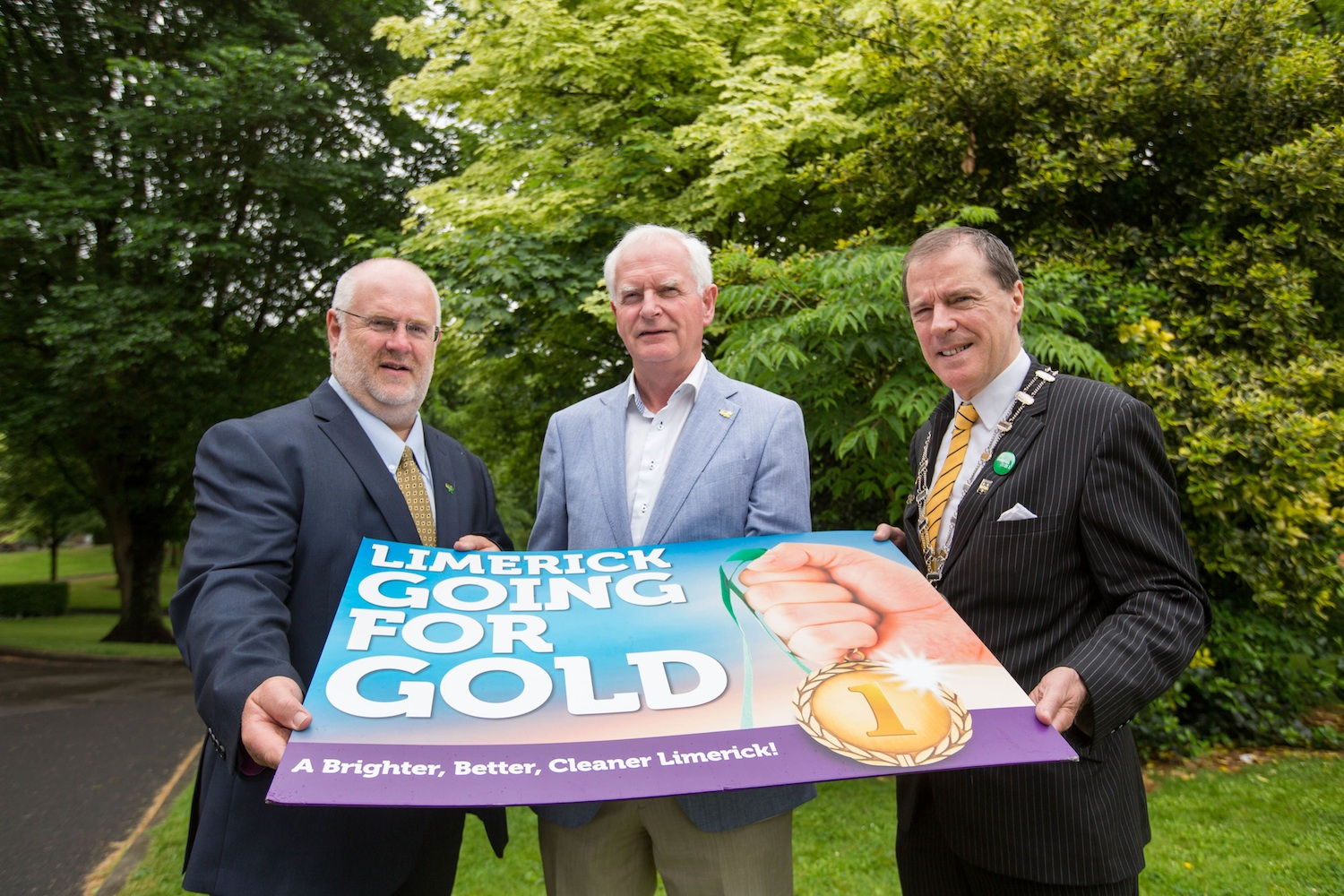 The Limerick Going for Gold 2016