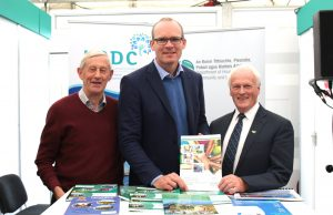 County Limerick Six year plan