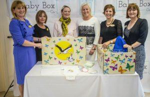 Limerick Baby Box programme