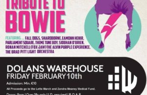 David Bowie Tribute Fundraiser For Zondra Meaney and Lette March