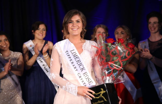 Limerick Rose 2017
