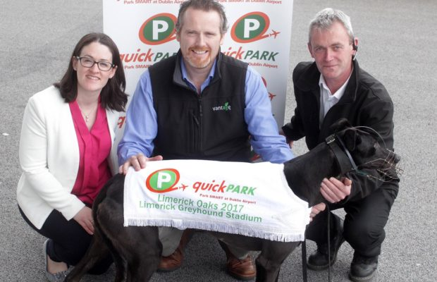 Limerick Oaks Launch